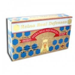 Reina Real Defenses Gelea Reial Equinàcea Robis 20 ampolles