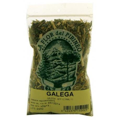 GALEGA. (Galega officinalis. L.) LA FLOR DEL PIRINEO. 40 g.