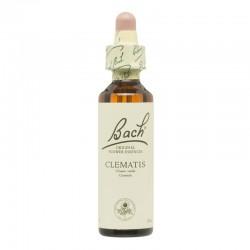 Clematis - Clemátide Clematis vitalba Flor de Bach 20 ml.