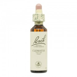 Clematis - Clemátide Flor de Bach 20 ml.